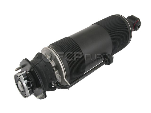 Mercedes Strut Assembly (SL500 SL600) - Genuine Mercedes 2303200213