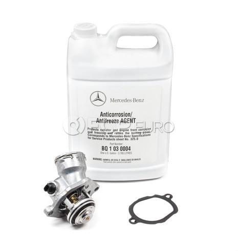 Mercedes Thermostat Kit (M272) - Borg Warner / Wahler 2722000415KIT
