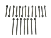 Audi VW Cylinder Head Bolt Set - Reinz 022198384A