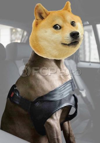 BMW Doge Safety Harness (Small) - Genuine BMW 82200416253