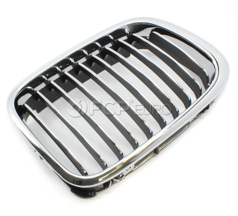 BMW Kidney Grill Right - Economy 51138208490