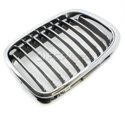 BMW Kidney Grill Right - Economy 51138208490