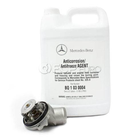 Mercedes Thermostat Kit (M112 M113) - Wahler M112113TK