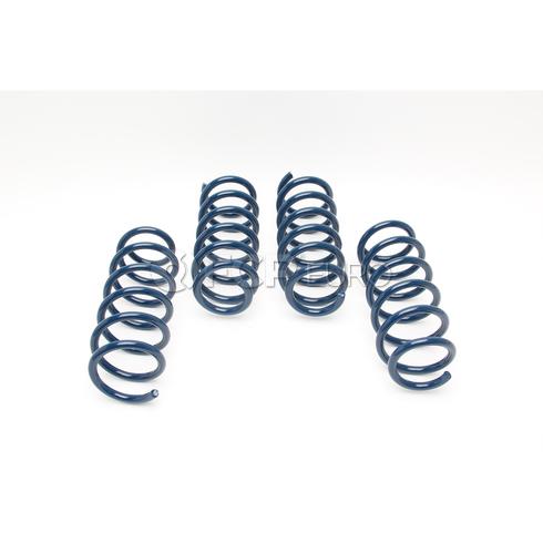 BMW Coil Spring Lowering Kit (F10 550i) - Dinan D100-0902