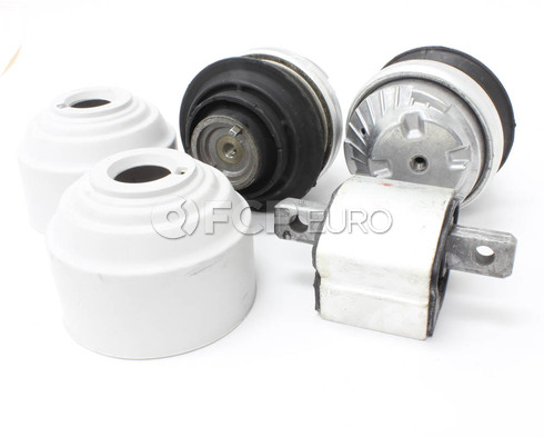 Mercedes Engine and Transmission Mount Set (E500 S430) - OEM 2PEMTMK1
