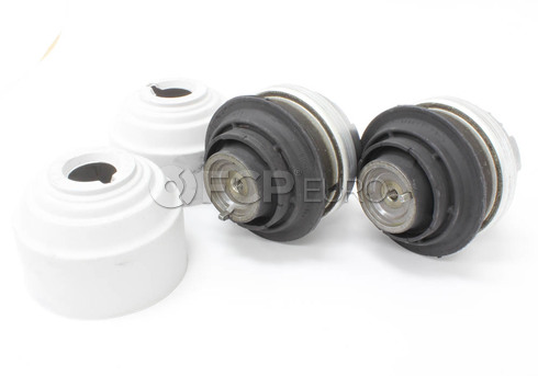 Mercedes Engine Mount Set (E500 S430) - OEM 2PEMK1