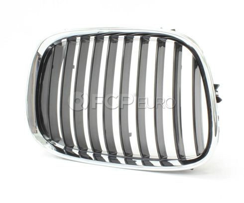 BMW Kidney Grille Right - Economy 51138159316