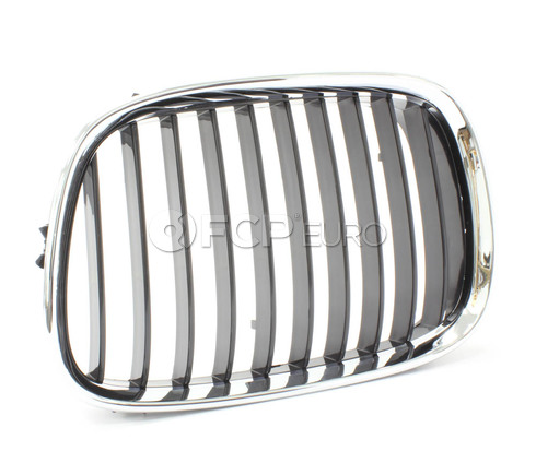BMW Kidney Grille Left - Economy 51138159315