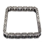 VW Audi Timing Chain ( A8 S4 Golf Jetta ) - IWIS 077109120