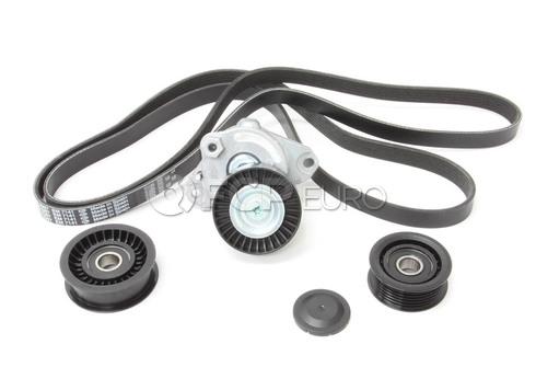 Mercedes Drive Belt Kit - INA 272273BELTKT2