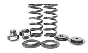 Mercedes Air Spring to Coil Spring Conversion Kit Rear - Arnott Industries ARN-C2896