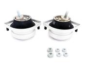 BMW Engine Mount Kit - 22111092895KT