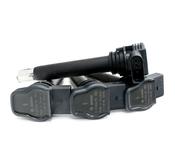 Audi VW Ignition Coil Service Kit - Bosch KIT-07K905715GKT2