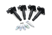 VW Ignition Coil Kit - Beru KIT-06B905115E5