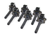 Audi VW Ignition Coil Set of 6 - Karlyn STI 058905105X6